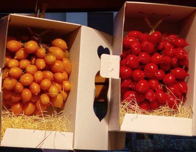 Pomodorino del piennolo DOP rosso e arancio El Casolin Malo